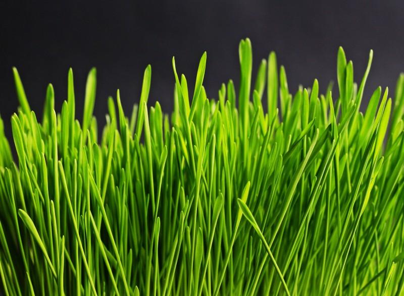 Smarte løsninger til grønnere omgivelser