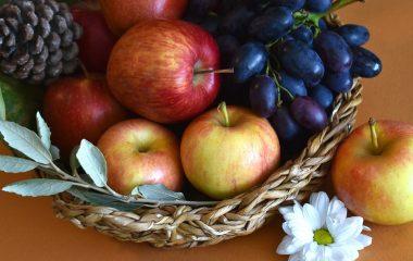 Tag et sundt valg med praktisk økologisk frugtordning
